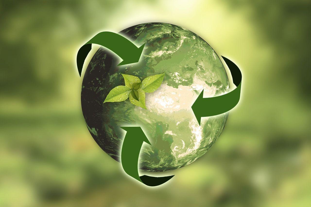 Latino América Verde 2019